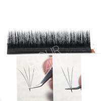One second fan volume rapid bloom lash extensions chicago EL64