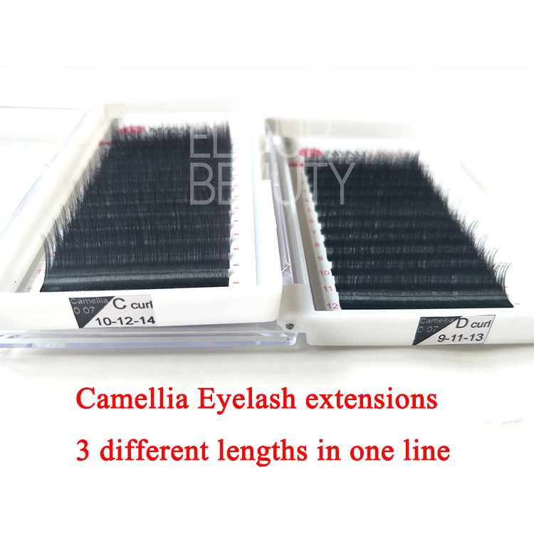 New design OEM brand camellia eyelash exensions beauty supplies EL32