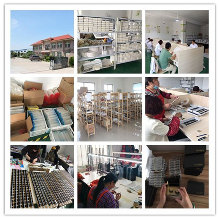 Elour lashes China factory.jpg