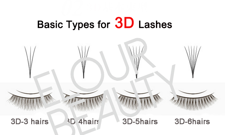 basic types for 3d lashes.jpg