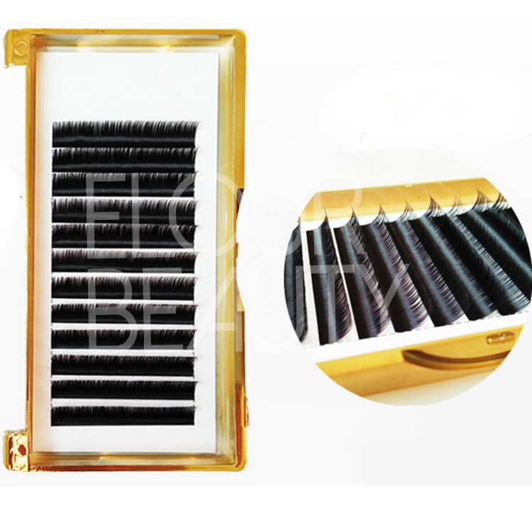 gold tray best quality camellia lashes extension China supplies.jpg