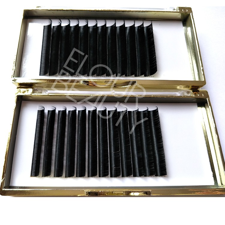 3d eyelash extensions China wholesale.jpg