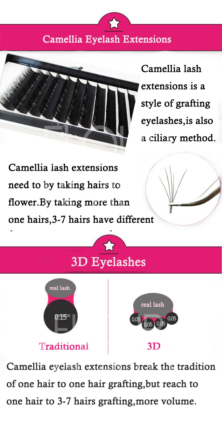 newest volume camellia eyelash extensions China vendor.jpg