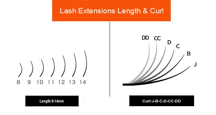 eyelash-extensions-curl-length.jpg