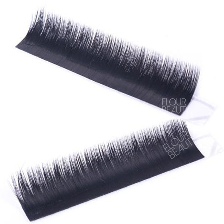 volume-easy-fan-lash-extensions.jpg