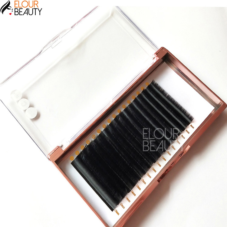 Lashbeauty private label silk individual eyelash extensions EY20
