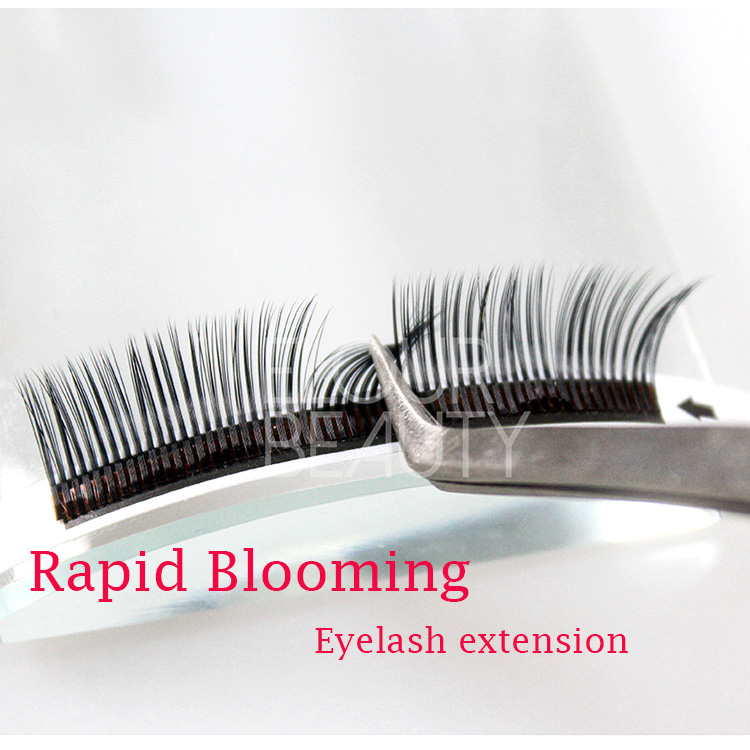 Best quality easy to use rapid blooming eyelash extensions 5D lashes wholesale EL56