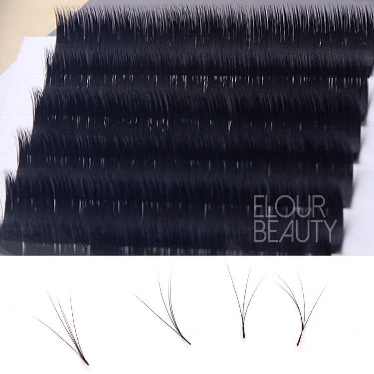 Newest no base one second bloom camellia eye lash extensions Brisbane EL37