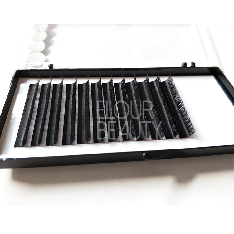 Camellia private label eyelash extension products wholesale ED07