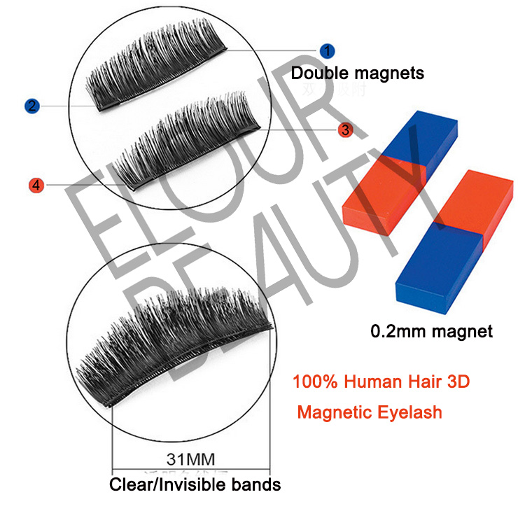 3D magnetic lashes 100% remy human hair China wholesale EA14